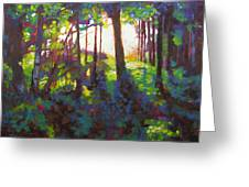 Canopy Greeting Card