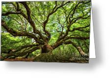 Canopy Of Color At Angel Oak Tree  Greeting Card
