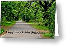 Canopy Road Greeting Card