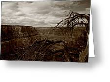 Canyon Black And White Greeting Card