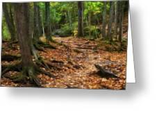 Canyon Falls Trail 1 Greeting Card