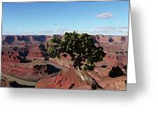 Canyon Impression Greeting Card