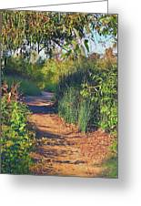 Canyon Path II Greeting Card