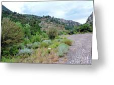 Canyon Road Greeting Card