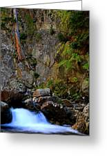 Canyon Wall Greeting Card