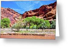 Canyon Wall. Greeting Card