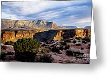 Canyon Walls At Toroweap Greeting Card