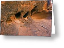 Canyonlands Cove Greeting Card