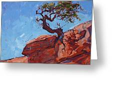 Canyonlands Pine Greeting Card by Erin Hanson