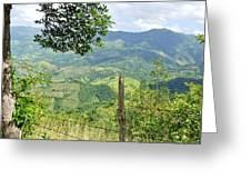Caonillas, Puerto Rico Greeting Card
