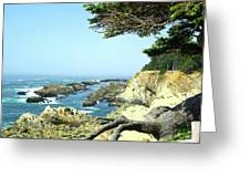 Cape Arago, Or. Greeting Card