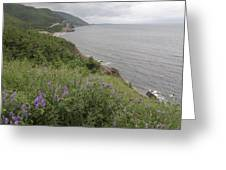 Cape Breton Coast Greeting Card
