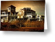 Cape Cod Gold Greeting Card