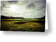 Cape Cod Marsh 1 Greeting Card