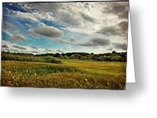 Cape Cod Marsh 2 Greeting Card