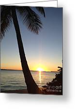 Cape Coral Winter Sunset  Greeting Card
