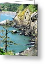 Cape D View Greeting Card