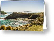 Cape Grim Cliff Panoramic Greeting Card