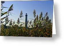Cape May Light Autumn Greeting Card