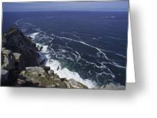 Cape Point, South Africa Greeting Card