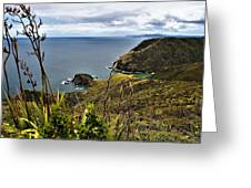 Cape Reinga North Island New Zealand Greeting Card