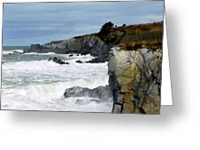Cape St. Mary's Greeting Card