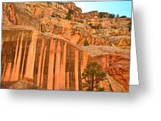 Capitol Gorge Desert Varnish Greeting Card