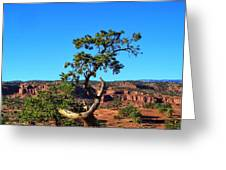 Capitol Reef 6 Greeting Card
