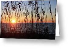 Captiva Sunset Greeting Card