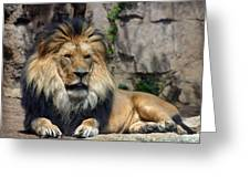 Captive Pride Greeting Card