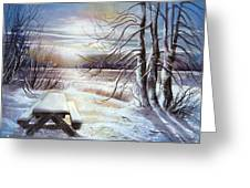 Capturing The Snow Greeting Card