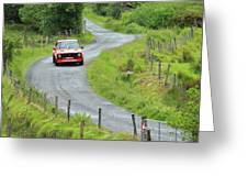 Car 88 Donegal International Rally Greeting Card