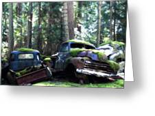 Car Lot In The Forest Greeting Card