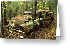 Car Wreck In The Forest Greeting Card