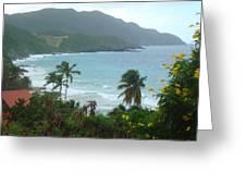 Carambola Photograph Virgin Islands Greeting Card