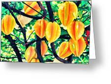Carambolas Starfruits Greeting Card
