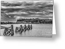 Cardiff Bay Dolphins Mono Greeting Card