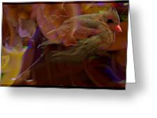 Cardinal And Abstract Greeting Card
