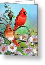 Cardinal Day 3 Greeting Card