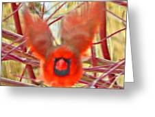 Cardinal In Flight Abstract Greeting Card