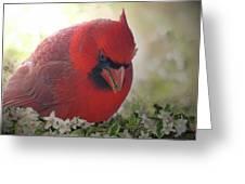 Cardinal In Flowers Greeting Card