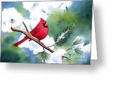 Cardinal In Winter Painting By Deborah Ronglien