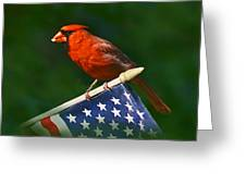 Cardinal On American Flag Greeting Card