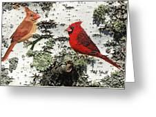 Cardinal Pair II Greeting Card