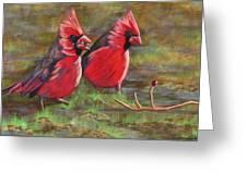 Cardinal Two Greeting Card