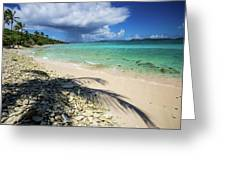 Caribbean Afternoon Greeting Card