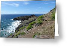 Caribbean Coastal Path Greeting Card