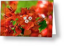 Caribbean Floral Surprise Greeting Card