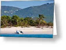 Caribbean Island Greeting Card