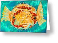 Caribbean Puffer Greeting Card